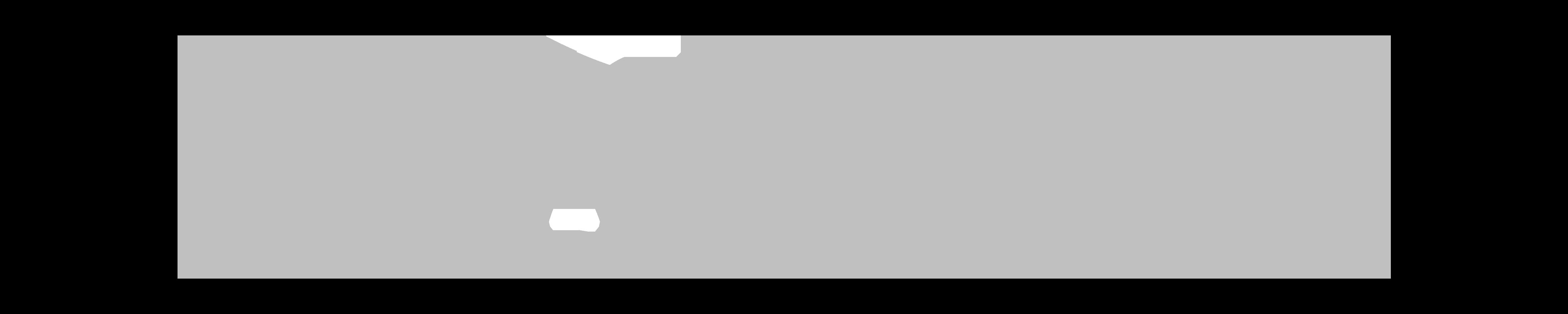 METROSERVI